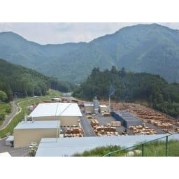 【レンタル商品】国産杉 薄型頑丈タワーシェルフ 幅60高さ89.5cm 兵庫木材センター
