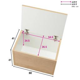 【レンタル商品】耐荷重100kg!収納庫付ベンチ ボックス・幅60奥行41cm