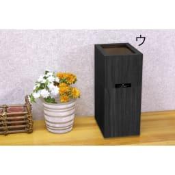 バスク すっきり見えるダストボックス/ゴミ箱 Sサイズ ウ:ブラック 見た目もすっきりのダストボックス