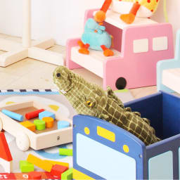 na-KIDS Picc's(ネイキッズ ピッツ)/おもちゃ箱