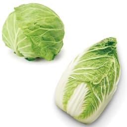 鮮度保持セット(袋8枚+ベジシャキちゃん2個) キャベツや白菜などの葉物野菜に