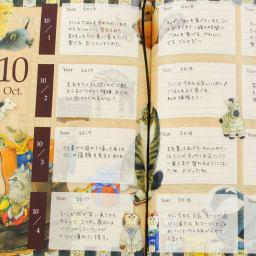 ディアカーズ/3年日記 アイボリーキャッツ