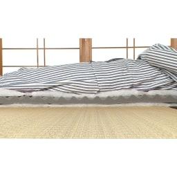 西川 夏のバーゲン寝具セット(シングル6点)・通常お届け 中芯のウレタンが腰もしっかりと支えてくれるから床の硬さも感じにくい!※断面サンプルにて撮影