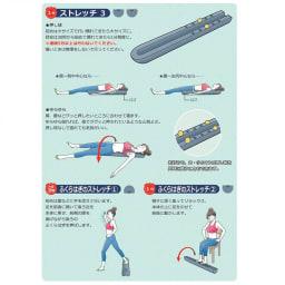 ピュアフィット リストレッチボディ これひとつで様々な運動が可能