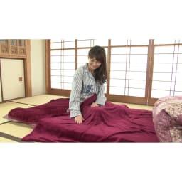 新春初売り 西川の特選寝具 ダブルセット(8点+特典2点付き) 数ある毛布生地の中から特に繊維が細いマイクロファイバーを使用した毛布!(※画像はシングルです。)