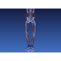 イージートレーナー  足首回りが固いと、体のバランスも崩れやすく筋肉も効率よく使いにくい状態に… ※イメージ