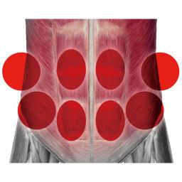 TBC スレンダーパッド2 DX(ボディ・ヒップ・腰用) Point.1 TBCボディシェイプコース理論に基づく設計 サロンのEMS(写真左)が8つのパッドに集約されているからくびれに効果的な腹斜筋にもアプローチ。