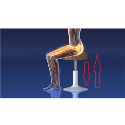ミズノ スクワットスリール 座って上下するだけだからラク!なのに、太もも前側の筋肉(大腿四頭筋)をしっかり鍛えられます。