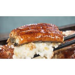 愛知・三河産うなぎ蒲焼 2Lサイズ3尾セット ふっくら肉厚なのに脂がクドくなくとろけるような食感です。脂が固まらず肉の中にまぶされた牛肉で言う「霜降り」。