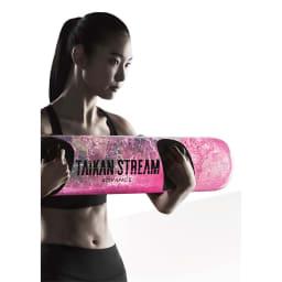 タイカンストリーム アドバンス / TAIKAN STREAM ADVANCE