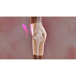 芦屋美整体 骨盤プロリセットショーツ ビューティー 前傾対策:お腹パネルが骨盤をぐっと起こして出っ張ったお腹を押さえます