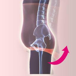 骨盤ベルトスリムニッパー(色・サイズが選べる2枚組) おしりUP:お尻を上げて、骨盤を起こします