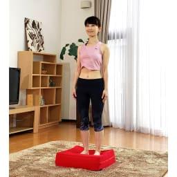 パーフェクトエクサ(R) 【美姿勢のエクササイズ】ただ立つと姿勢のバランスを整えるコンディショニングに ジャンプしない時もぜひこの上に立つことを習慣にしてください