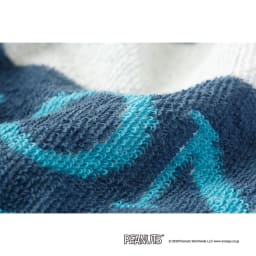スヌーピー タオルケット&枕カバー お得な2色セット タオルケット